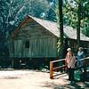 Donna - Rikard's Mill - Monroe County, AL  9-30-95
