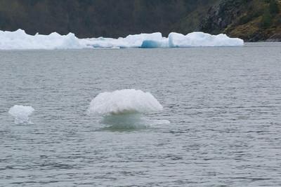 Juneau Random ice off mendenhall