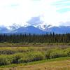 Alaska_CP_2July16_029