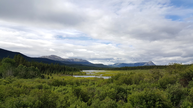 Alaska_CP_2July16_016