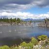 Alaska_CP_2July16_033