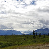 Alaska_CP_3July16_018