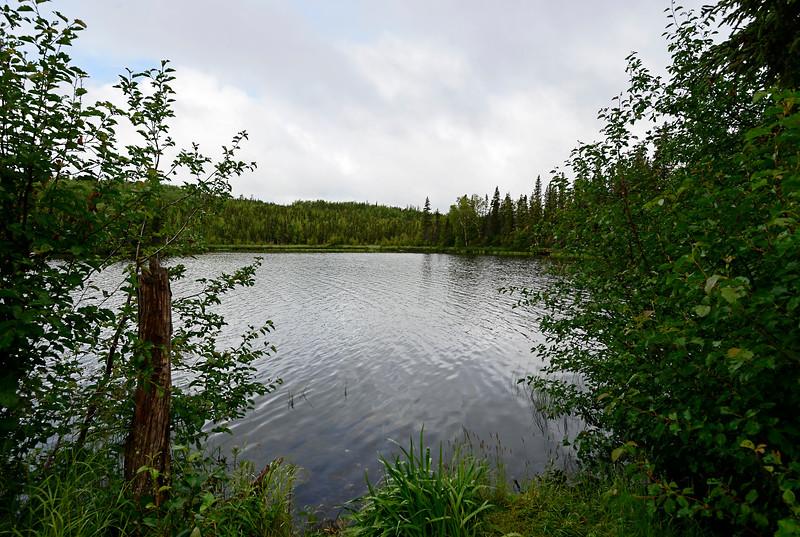 Alaska_7July16_016_e