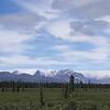 Alaska_11Jul16_CP_4