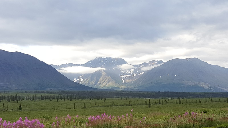 Alaska_CP_14July16_002