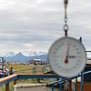 Alaska_30July16_022_e