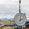 Alaska_30July16_021_e