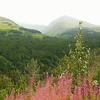 Alaska_CP_13Aug16_004