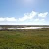 Alaska_CP_25Aug16_001
