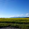 Alaska_26June16_CP_005