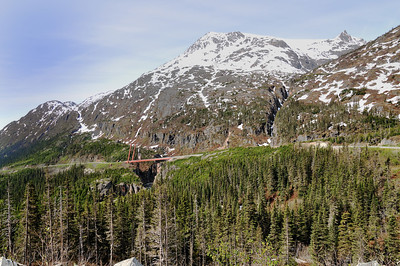The William Moore Bridge crosses a very active earthquake fault, and is only firmly anchored on the downhill side so that it can move freely with the earth! The gorge that the bridge crosses is only 110 feet wide, but 180 feet deep. Captain Moore was a famous steamboat captain and the first settler in Skagway (among many other exploits).