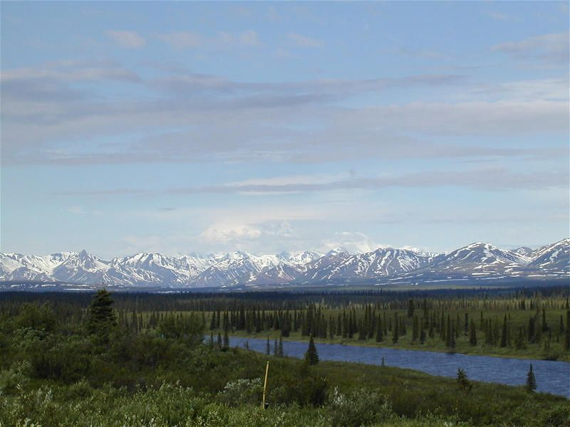The best view of Mt. Denali we got after leaving Park which was very wet and overcast