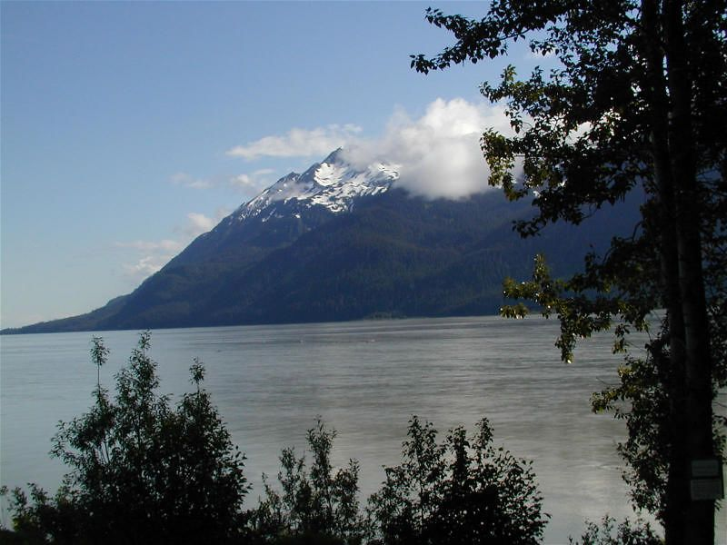 approaching Haines; we saw many Bald Eagles here to