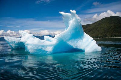 Ice berg at the entrance to Tracy arm