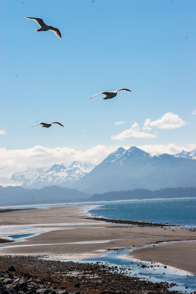 The Homer spit