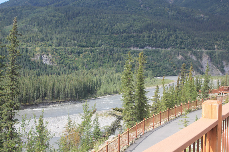 Friday, July 30th, we were transported to Denali Princess Lodge.