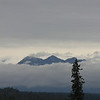 """Our first day in Alaska was cool, overcast and damp. From the lodge, we hoped to catch a glimpse of Denali """"The Mountain"""". Unfortunately, Denali is only visible 30% of the time."""