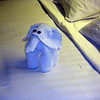<h2>A different towel sculpture every night</h2>
