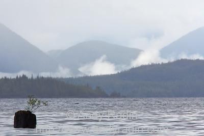Lake Kennedy, Vancouver Island