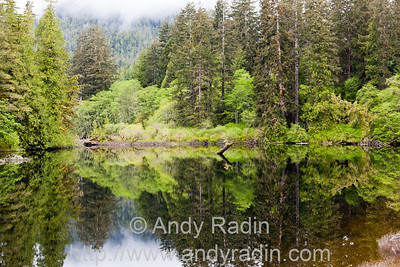 Kennedy River, Vancouver Island