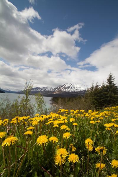 Alaska 2012 1-114