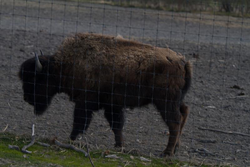 Alaska 2012 1-88