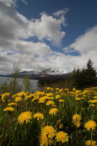 Alaska 2012 1-112
