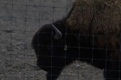 Alaska 2012 1-87