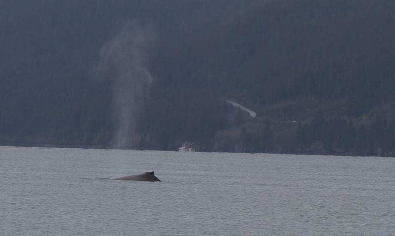 Alaska 2012 1-118