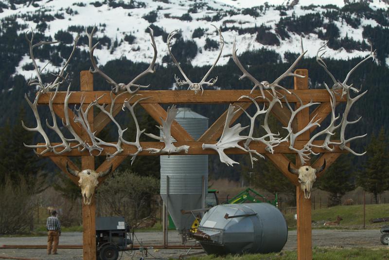 Alaska 2012 1-86
