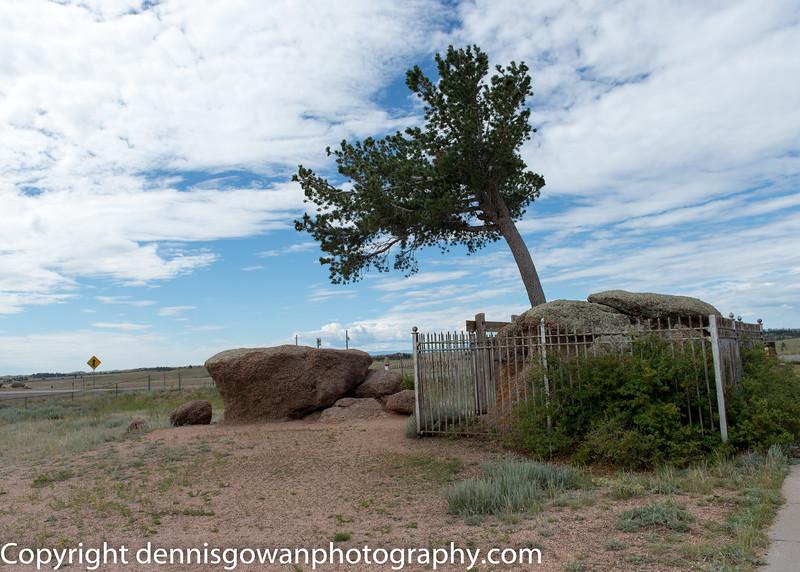 Tree Rock 2
