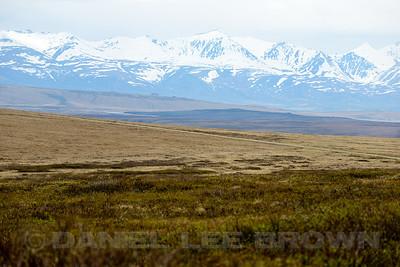 Kougarok Rd. Nome Alaska, 6-12-14. Cropped image.