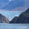 The Sawyer Glacier met the sea at two different locations.  This was location two.  A bit bigger, badder, and full of seals.