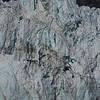 One section of Margerie Glacier in Glacier Bay National Park