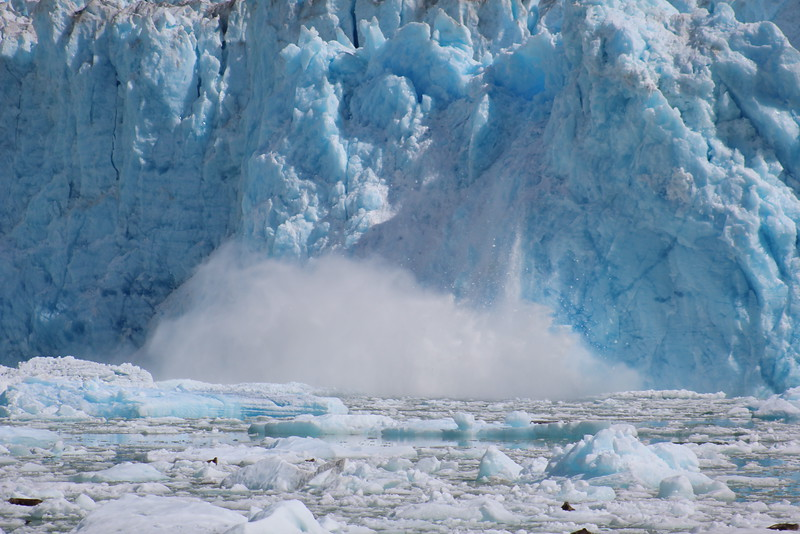 We waited a long time to see the glacier calve.  I wish you could've heard the sound it made--like a loud crack of thunder!  The tidal wave that ensued was equally as impressive.