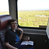 Train from Anchorage to Denali