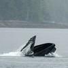Alaska 2017 Images-149