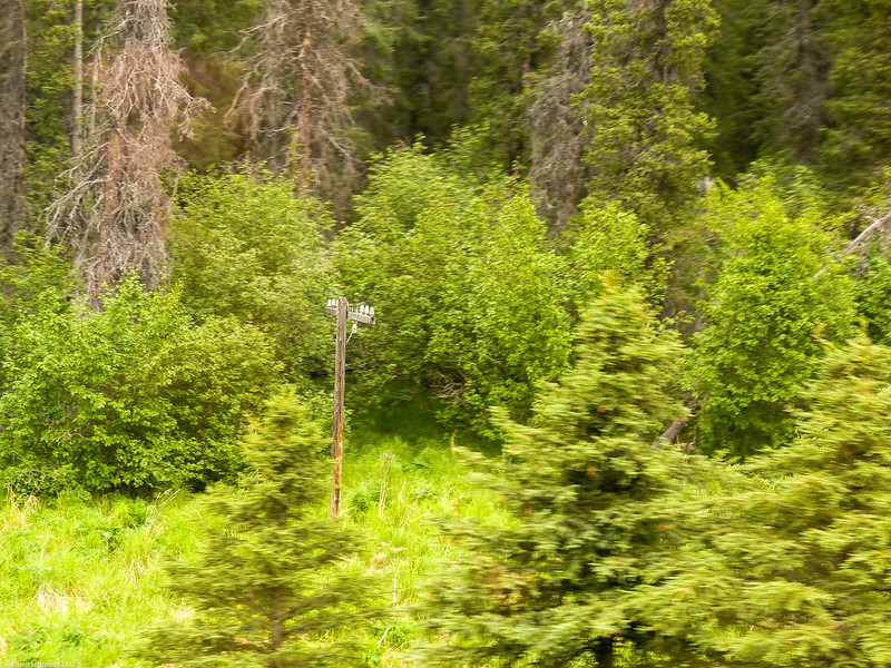 Alaska 2017 Images-238