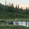 Alaska 2017 Images-334