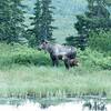 Alaska 2017 Images-330