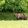 Alaska 2017 Images-205