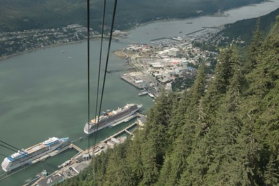 Riding the Tram up Roberts Mountain, we could see two large cruise ships on the left and the two much smaller Un-Cruise boats   (middle of the pic, just off the bow of the cruise liner).