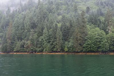mistyfjord-5631