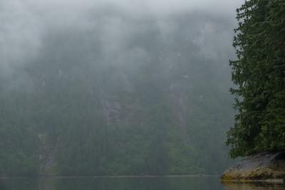 mistyfjord-5648