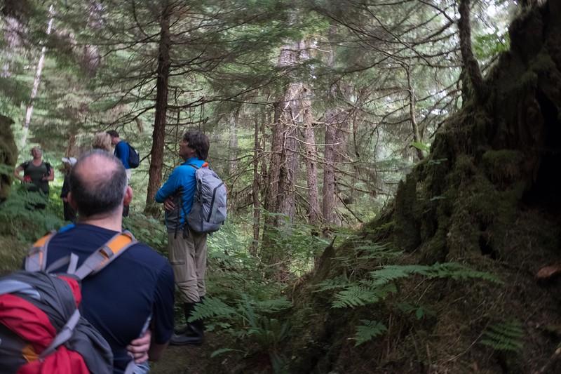 thursday-hiking-19