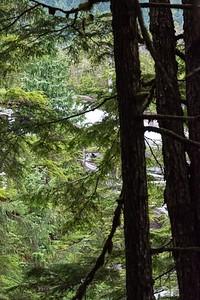 thursday-hiking-27