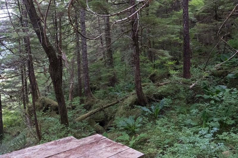 thursday-hiking-7