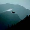 Eagle at flight.