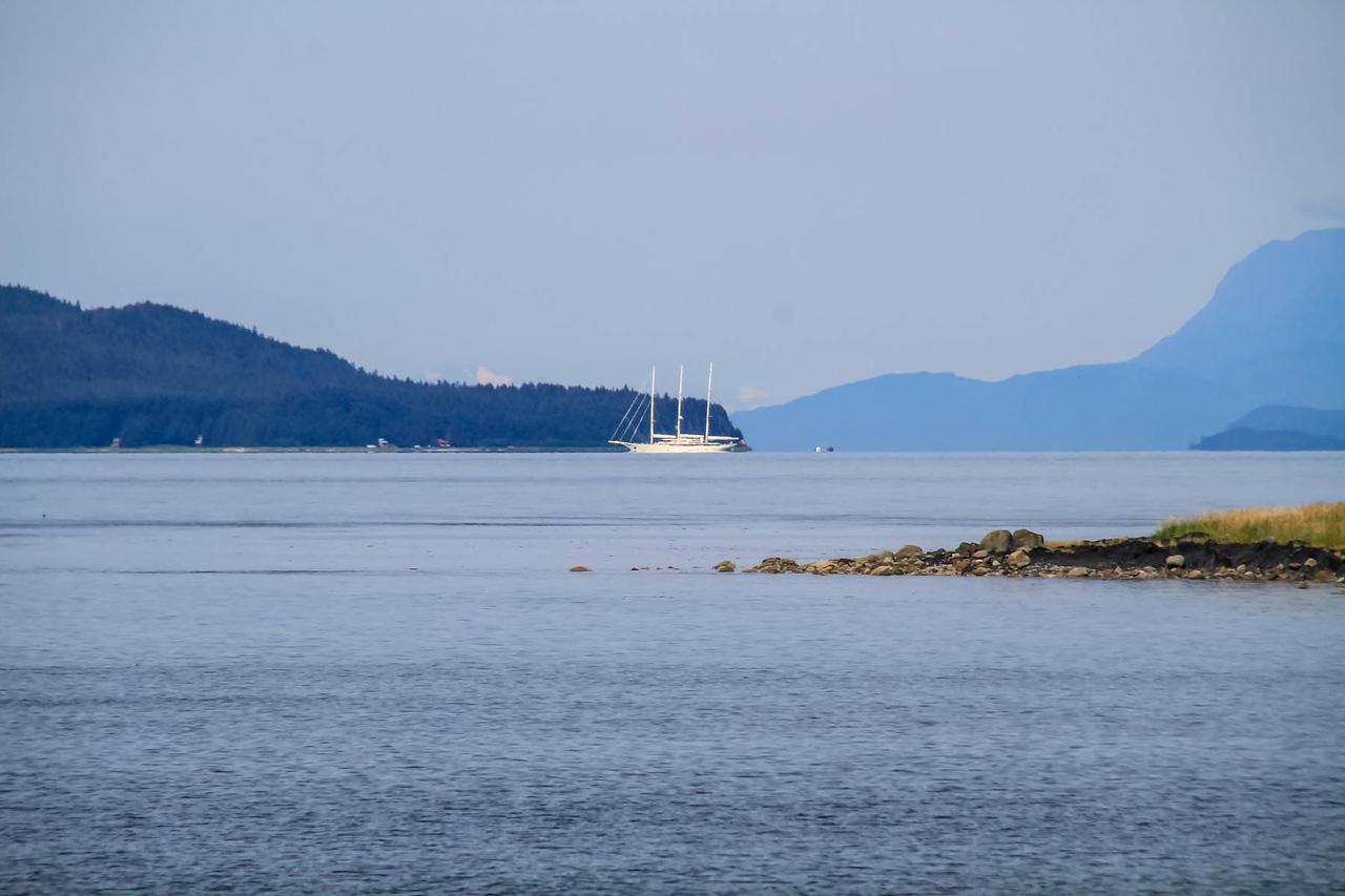 Juneau -  Whale Watching Boat Trip