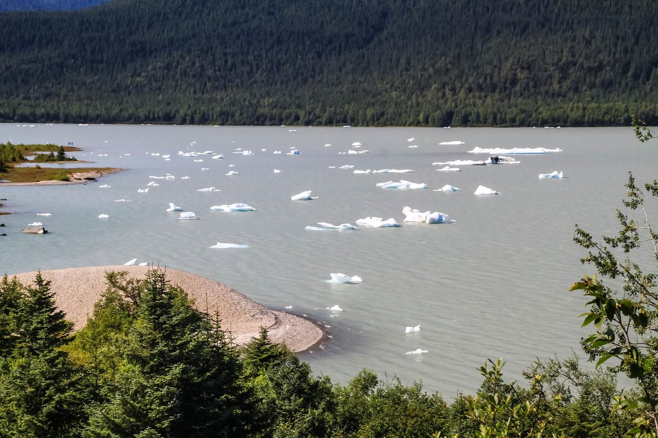Mendenhall Glacier - Juneau